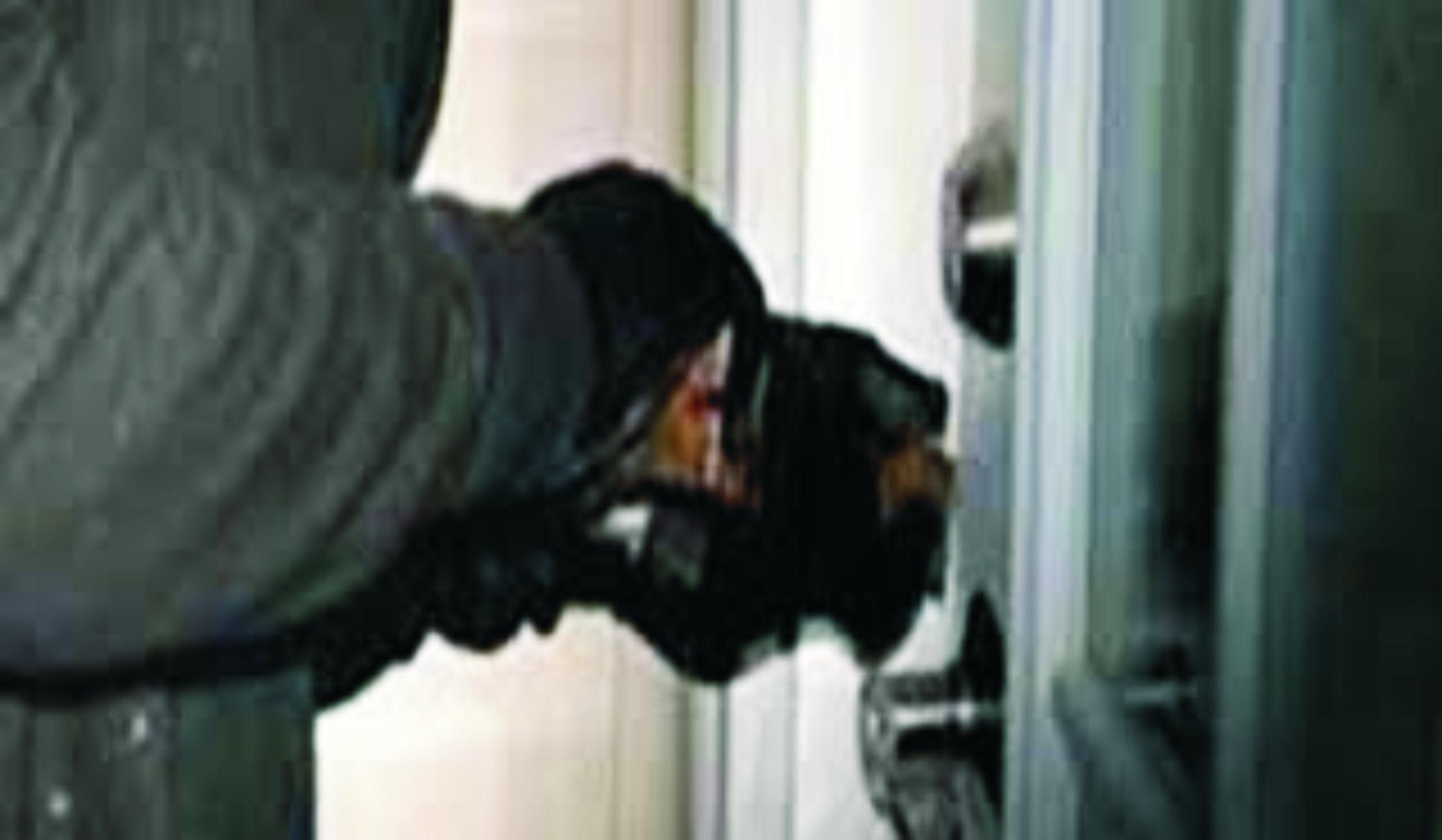 Kawanan Pencuri Berhasil Bobol Indomaret Wonopringgo
