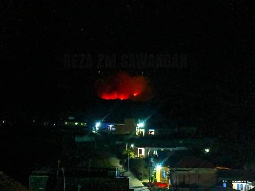 Kebakaran Landa Kawasan Hutan di Kawasan Gunung Slamet Jawa Tengah