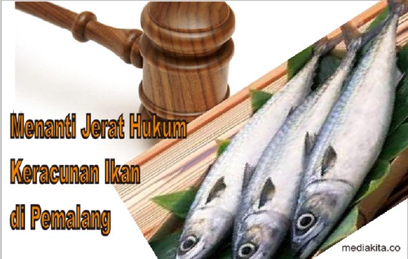 Menanti Jejak Kasus Keracunan Ikan BPNT di Pemalang, Nitizen Bicara Jerat Hukum Bagi Penyalur